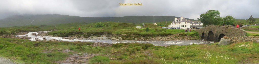 Hotel and Landscape